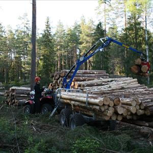 Mini Forwarder MS38 & MS48